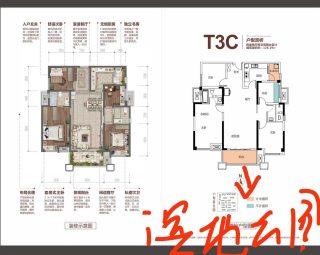 (桔山)飞洋华府·龙岸3室2厅2卫128m²毛坯房