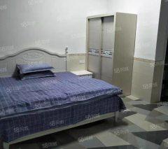 桔山 单身公寓 30平精装修出租